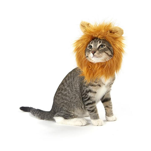 Lion Hair Costume For Cats