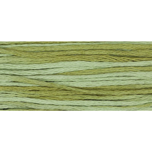 Dried Sage 1191 Weeks Dye Works Embroidery Floss