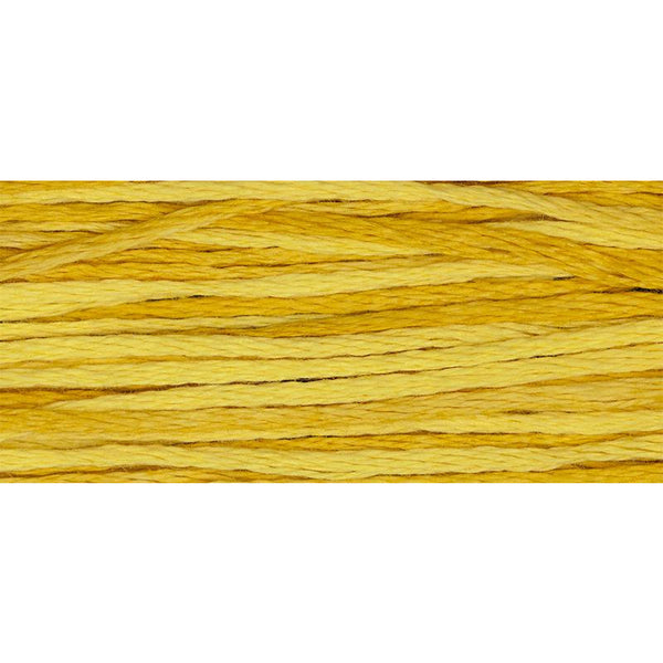 Squash 2224 Weeks Dye Works Embroidery Floss