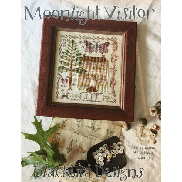 Anniversaries of the Heart Pattern 9 - Moonlight Visitor