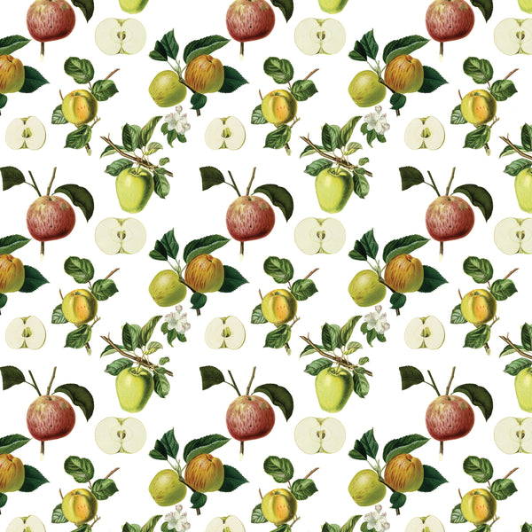 Gift Wrap ~ Apples
