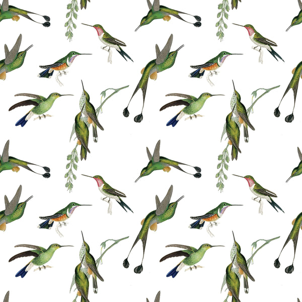 Gift Wrap ~ Hummingbird
