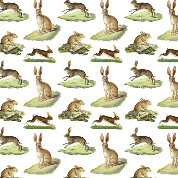 Gift Wrap ~ Rabbits