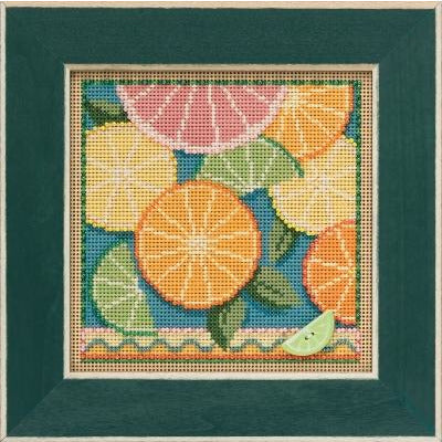 Buttons & Beads ~ Citrus Cross Stitch Kit