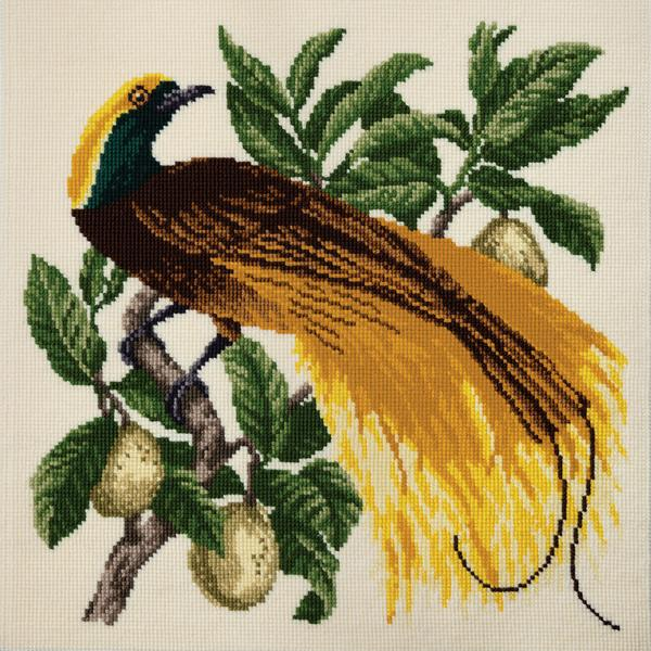 Tropical Birds - Emperor Needlepoint Tapestry Kit