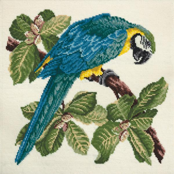 Tropical Birds - Macaw Needlepoint Tapestry Kit