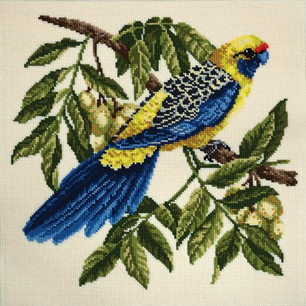 Tropical Birds - Rosella Needlepoint Tapestry Kit