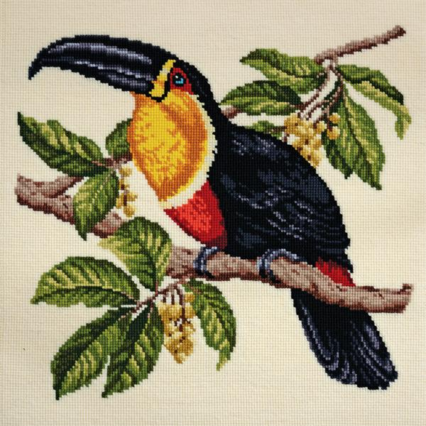 Tropical Birds - Toucan Needlepoint Tapestry Kit