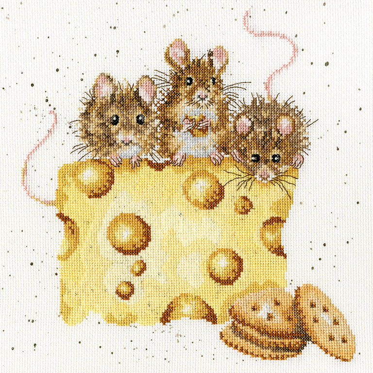 Crackers About Cheese Cross Stitch Kit