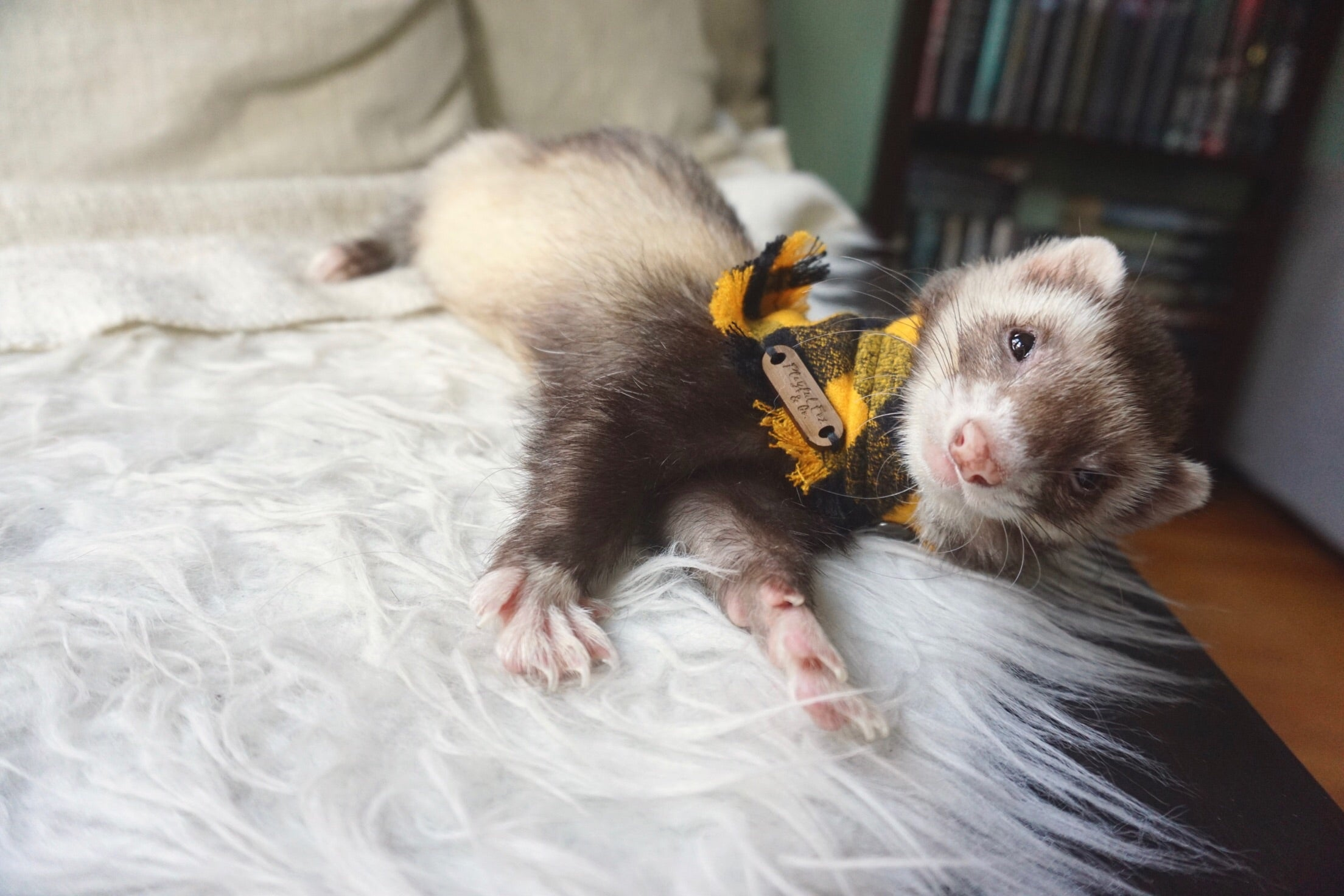 Ferret Bandana Snap-On Flannel