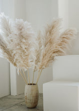 Load image into Gallery viewer, pampas grass (large bundle)