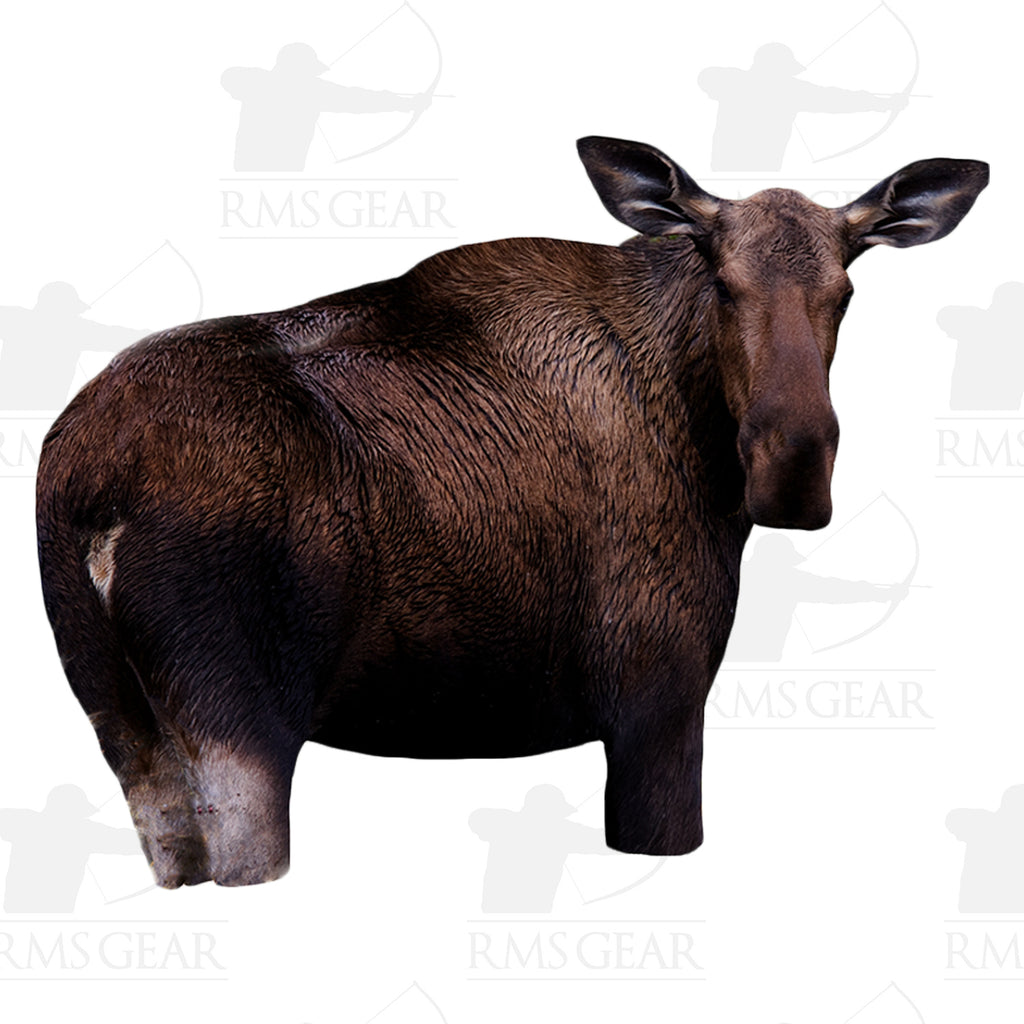 Used - Montana Decoy Moose II