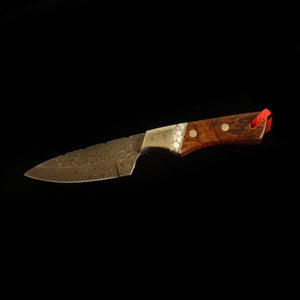 "Steve Rider 3 1/4"" Drop Point with Ironwood Handle - SR7RI"