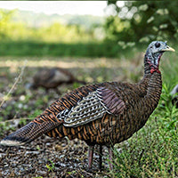 Zink Avian X Lookout Turkey Decoy