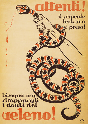 The German viper – Italian poster