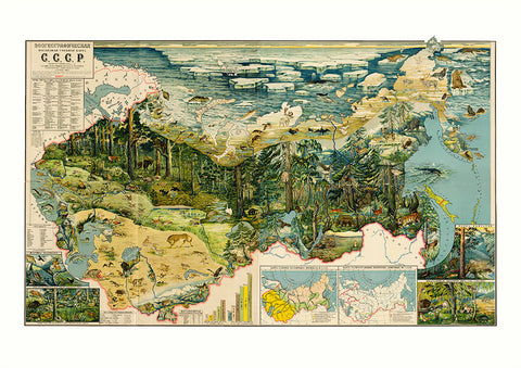 Zoogeographical map of the USSR – Soviet poster