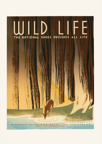 The National Parks preserve all life – American poster