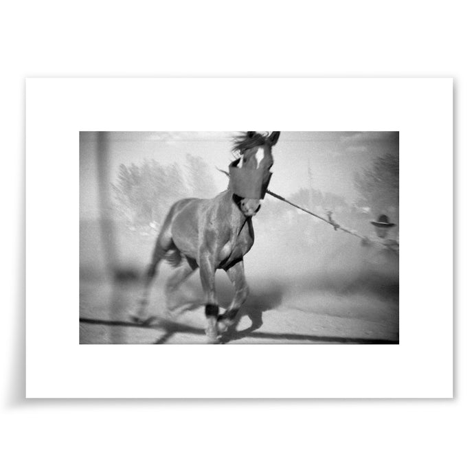 Horse and Rancher - 6x9 Print