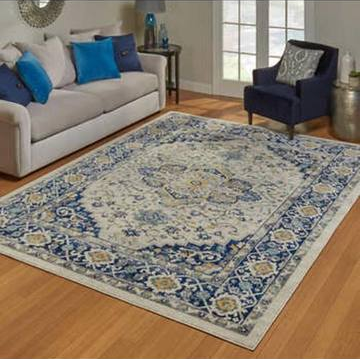 Beautiful 7x10 Area Rug $110