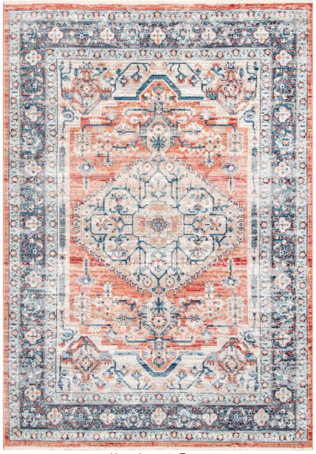 Zara Medallion Orange 5 ft. x 7 ft. Area Rug by Home Decorators Collection
