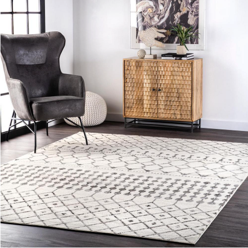 Zola Modern Trellis Gray 9 ft. x 12 ft. Area Rug by nuLOOM