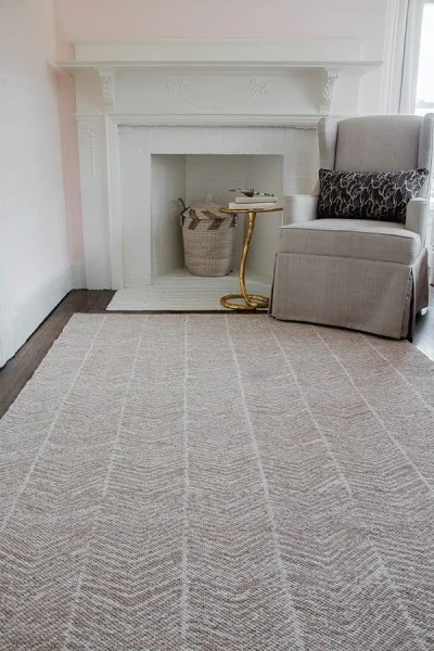 5x8 EASTON - CONGRESS AREA RUG by Erin Gates by Momeni