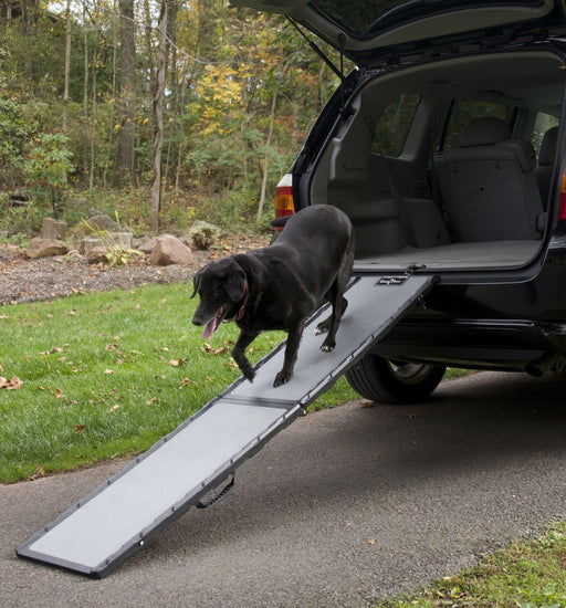 Gen7Pets™ Feather-Lite™ Ramp
