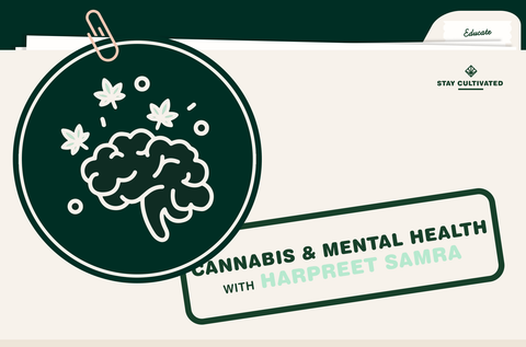 How Cannabis Impacts My Mental Health