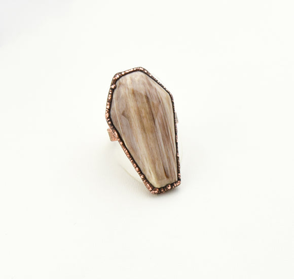 Petrified Wood Coffin Ring Size 10