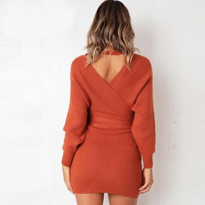 Autumn Winter Long Sleeve Knitted  Dress