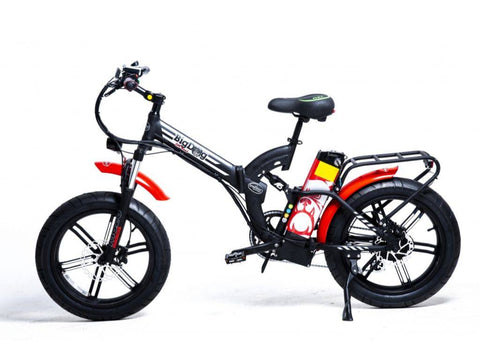 Green Bike Electric Motion Big Dog Off Road Electric Bike