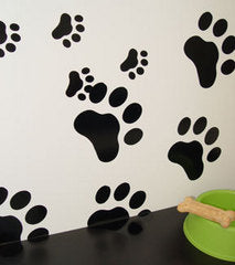 Paw Prints Everywhere!