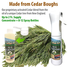 Load image into Gallery viewer, Amazing Cedar All Purpose Natural Cleaner Spray Kit – Clean, Degrease, Deodorize. Refill Concentrate