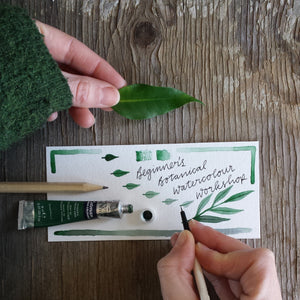 Beginner's Botanical Watercolours Workshop - Weds 12th Feb