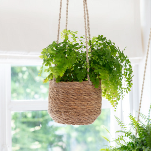 Seagrass hanging indoor plant pot
