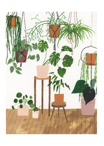 Potted House Plants Print