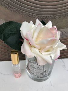 Single French Rose Pink Blush clear Glass