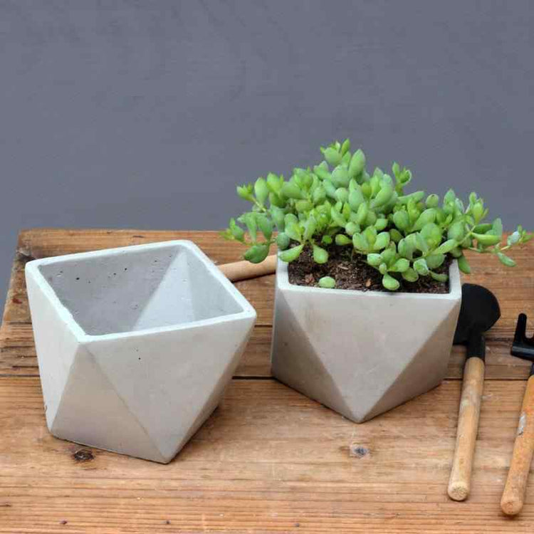 Diamond Cement Mini Planter