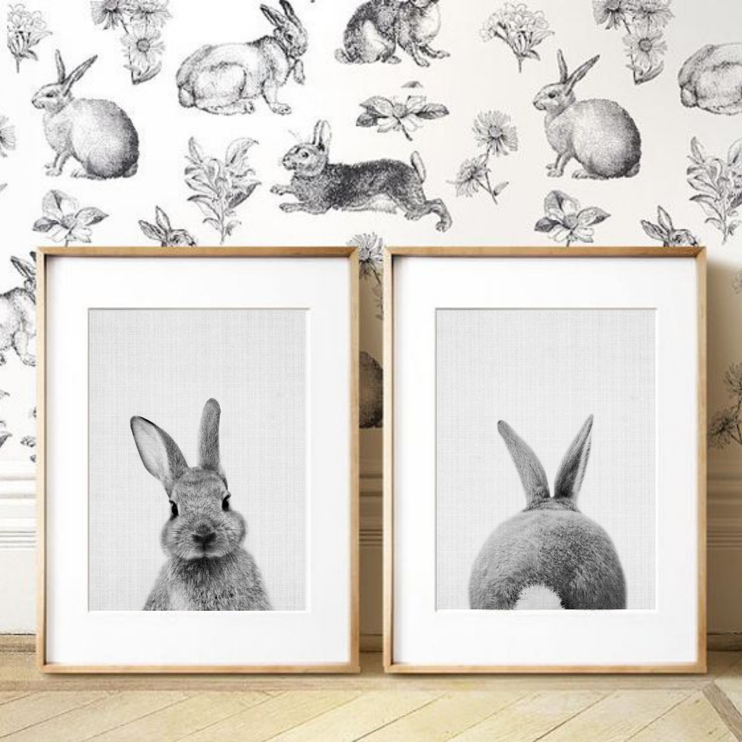 Bunny Canvas Set