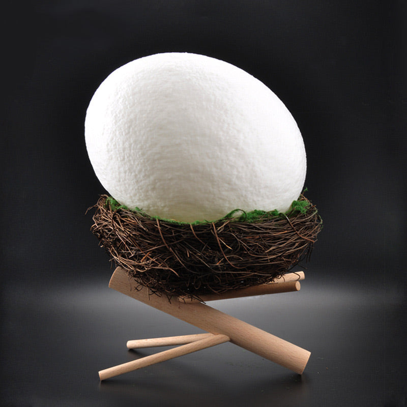 Bird's Nest Night Light
