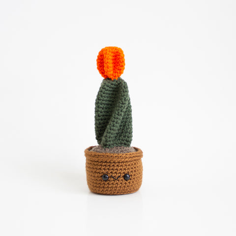Crochet Amigurumi Orange Moon Ball Cactus- MADE TO ORDER