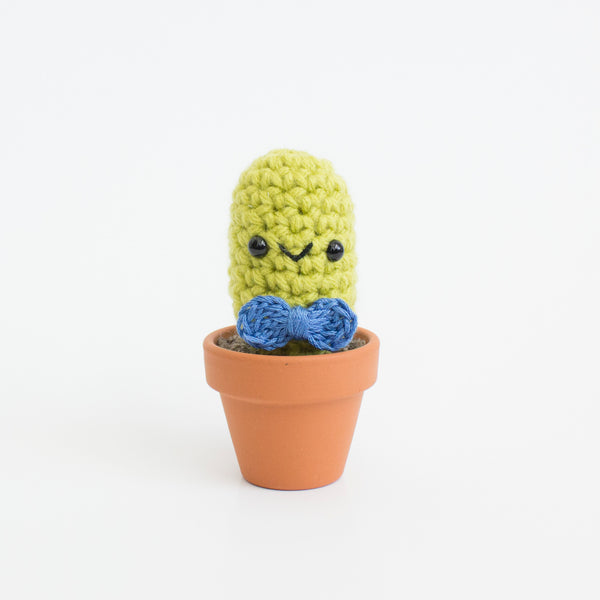 Carlos the Saguaro Cactus Crochet Amigurumi Pattern – Shiny Happy ... | 600x600