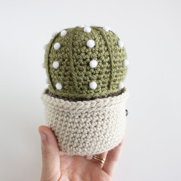 Crochet Amigurumi Sand Dollar Cactus- MADE TO ORDER