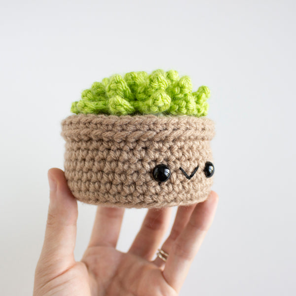 Crochet Amigurumi Succulent- MADE TO ORDER