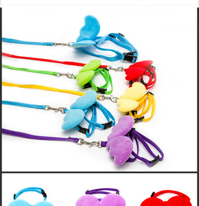 Angel Wing Leash and Collar Set