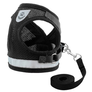 Leash and Reflective Harness Set