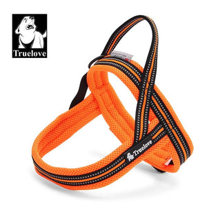 Padded Nylon Dog Harnes