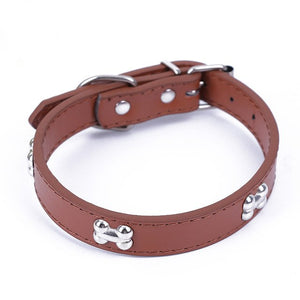 Leather Bone Collar
