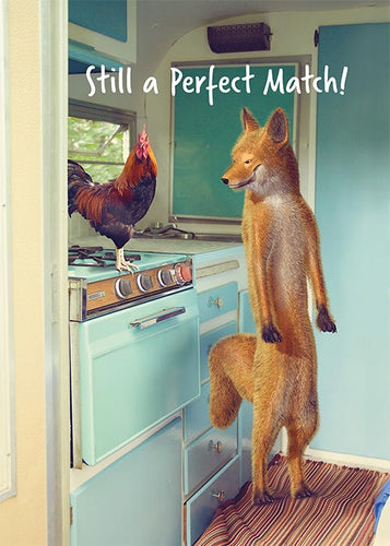 Perfect Match Funny Anniversary Card