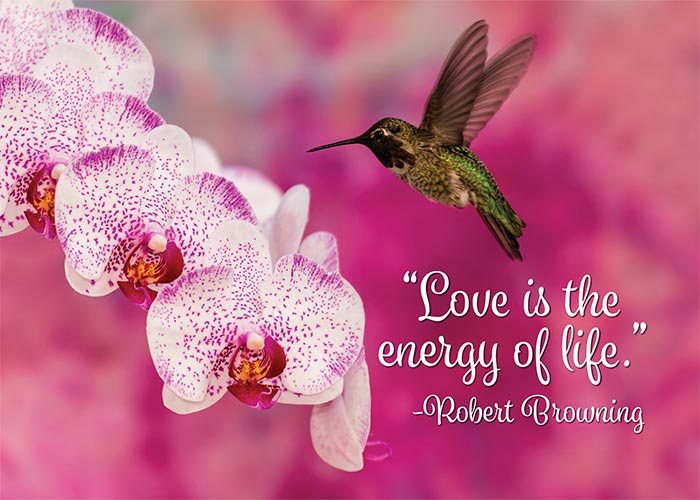 Love is the Energy of Life Motivational Anniversary Card